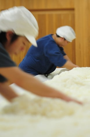 Hakkaisan Brewery Sake Production
