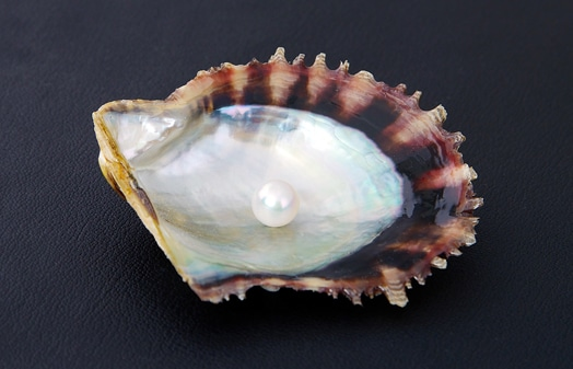 Japanese Akoya Pearl