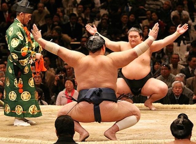 japan guide.com Sumo II H2